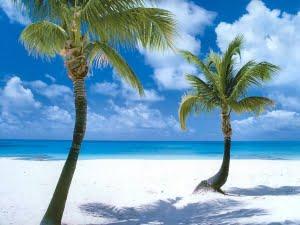 Zeilen bij Barbuda - CocoPoint